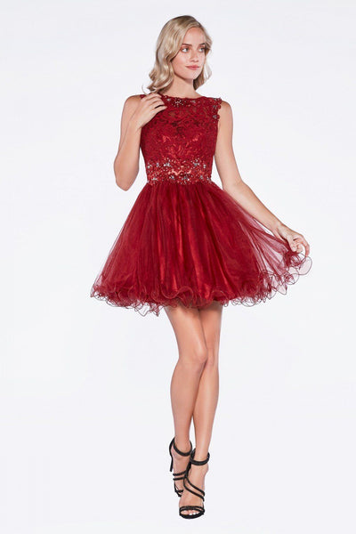 Short Ruffled Dress with Lace Bodice by Cinderella Divine CD0117