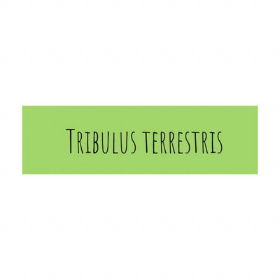 Tribulus Terrestris sus beneficios