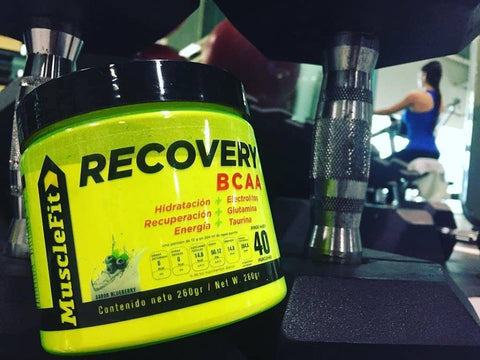 recovery bcaa muscle fit