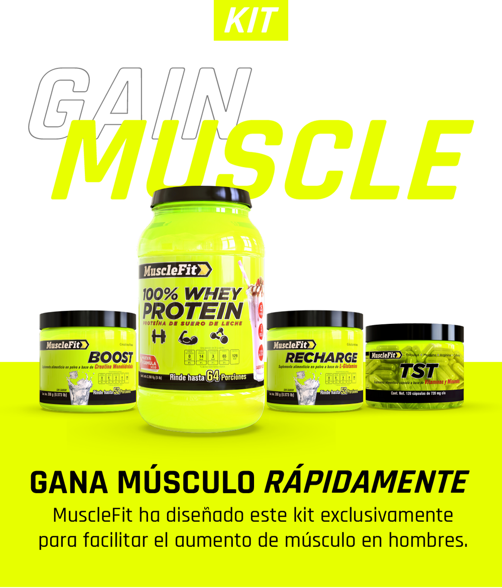 Gain Muscle - MuscleFit