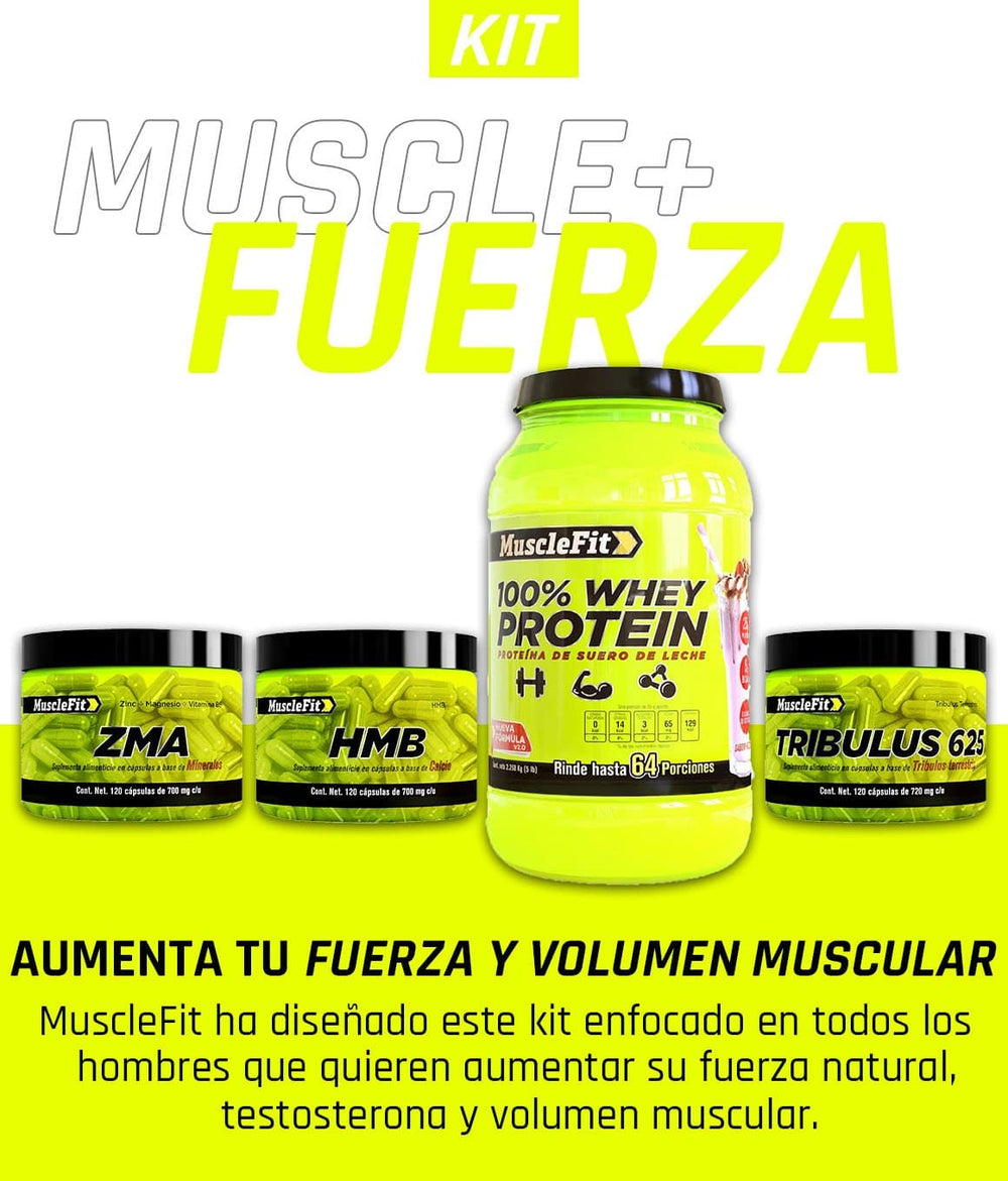 Muscle + Fuerza - MuscleFit