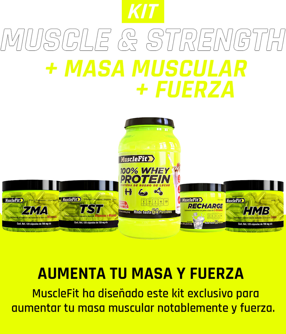 Muscle & Strength - MuscleFit