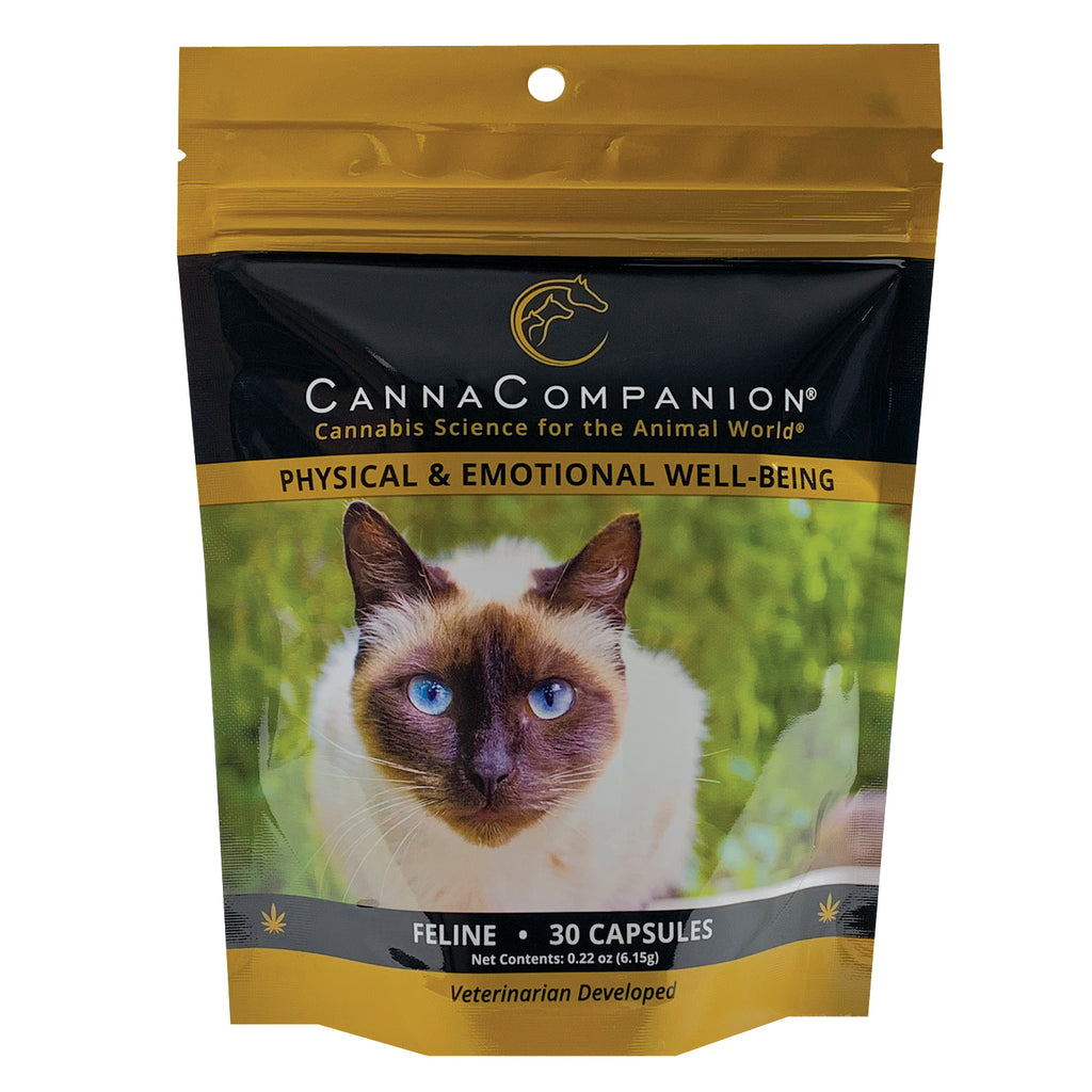 package of 30 cbd capsules for cats