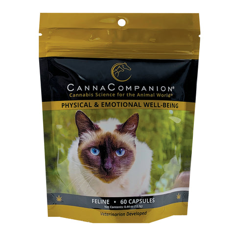 package of 60 cbd capsules for cats