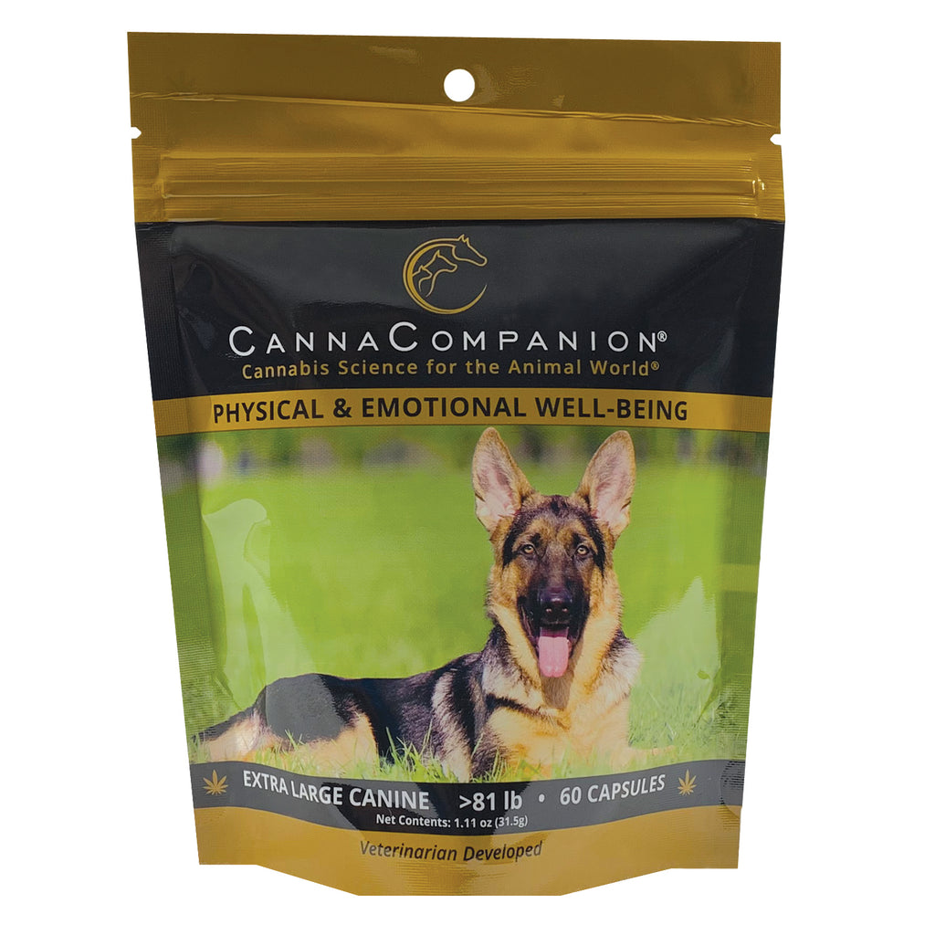 Regular Strength CBD Capsules for Extra Large Dogs (60 count)