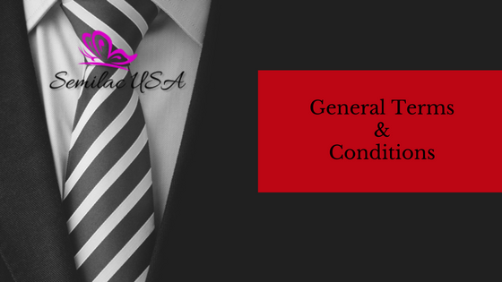 Semilac USA General Terms And Conditions