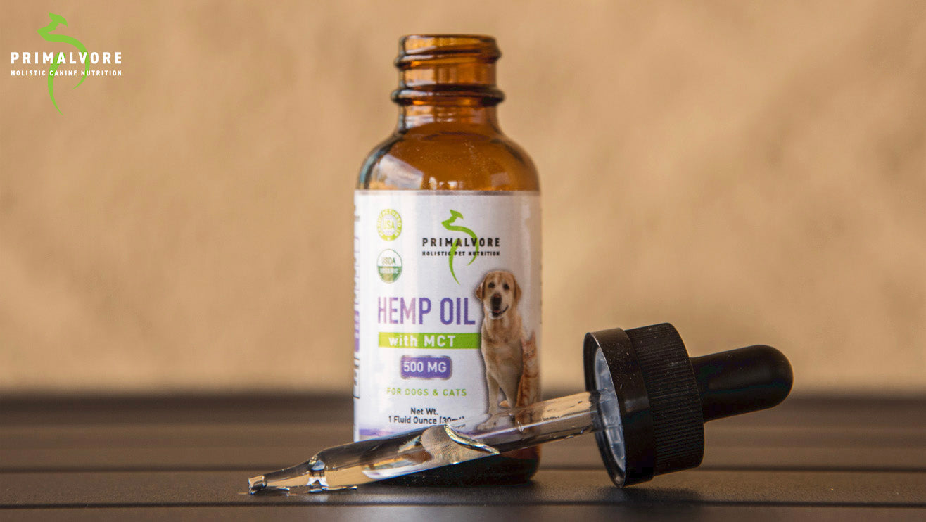 Introducing Hemp Oil for Dogs & Cats