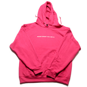 Never Forget You Are 1/1 Sangria Hoody