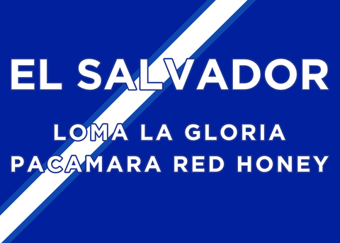 EL SALVADOR LOMA LA GLORIA PACAMARA RED HONEY PROCESS