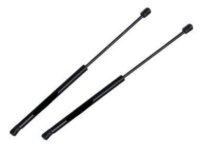 Bonnet Gas Struts for BA / BF Ford Falcon - Spoilers and Bodykits Australia