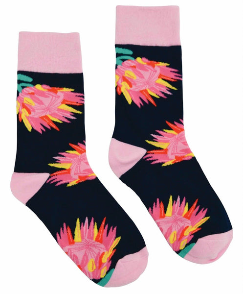 FUNKY FEET AUSTRALIAN NATIVES SET OF 3 SOCKS