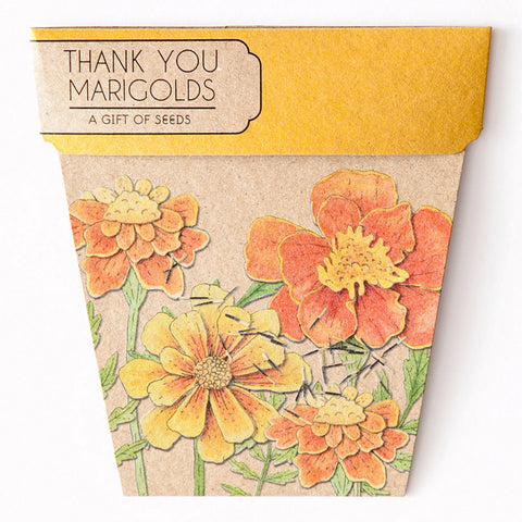 MARIGOLDS GIFT OF SEEDS