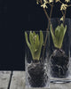 Værtinde Gave Frederik Bagger Flowers Blomster Glass Glas Vase Fine Cuts Smuk Beautiful Classic Klassisk