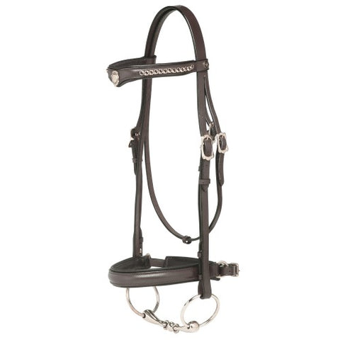 "Jeremy & Lord ""V"" Dressage Bridle"