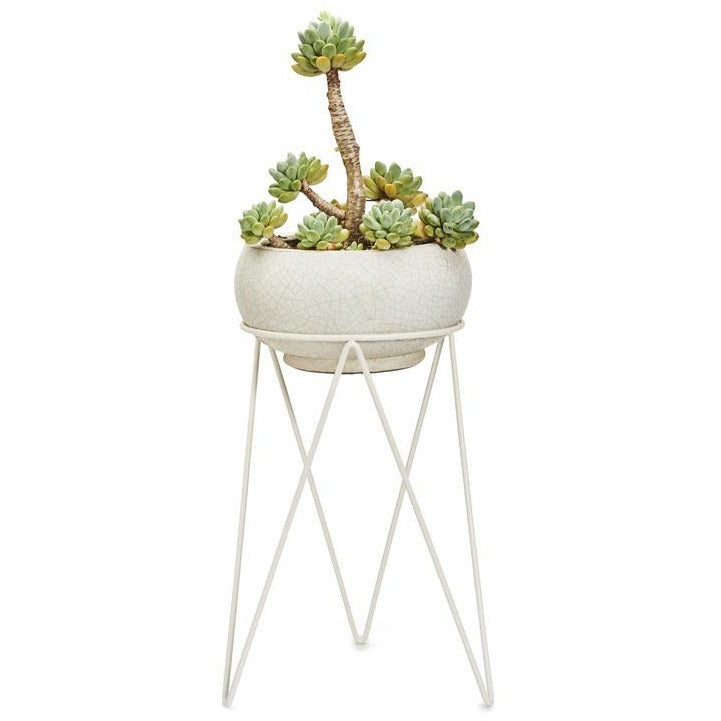 PLANT LUXE – Pot Plant Stand