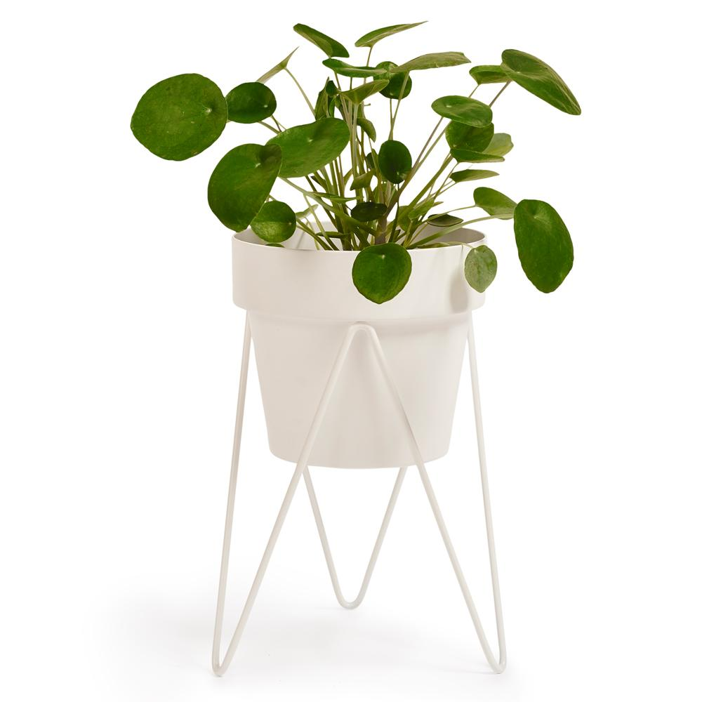 SPROUT – Small Pot Plant Stand