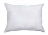 Bay State Travel Pillow