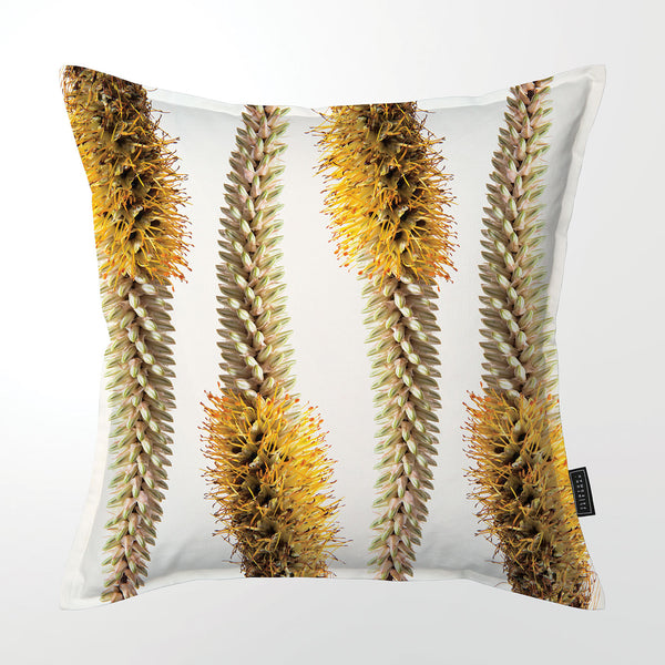Scatter Cushion (Single sided print) - Aloe Spicata