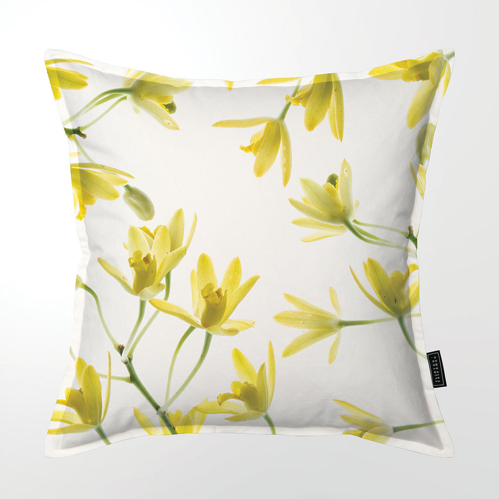 Scatter Cushion (Single sided print) - African Orchid