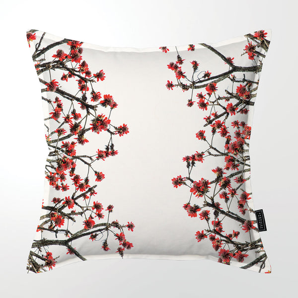 Scatter Cushion (Single sided print) - Erythrina latissima
