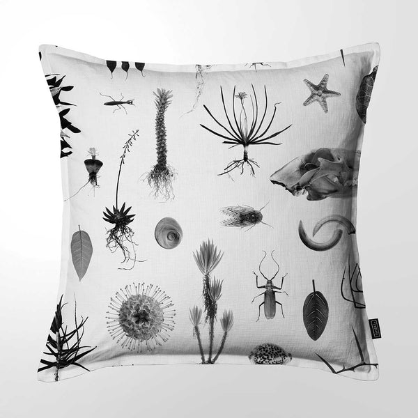 Scatter Cushion (DBL sided print) - Natural Curiosities 02