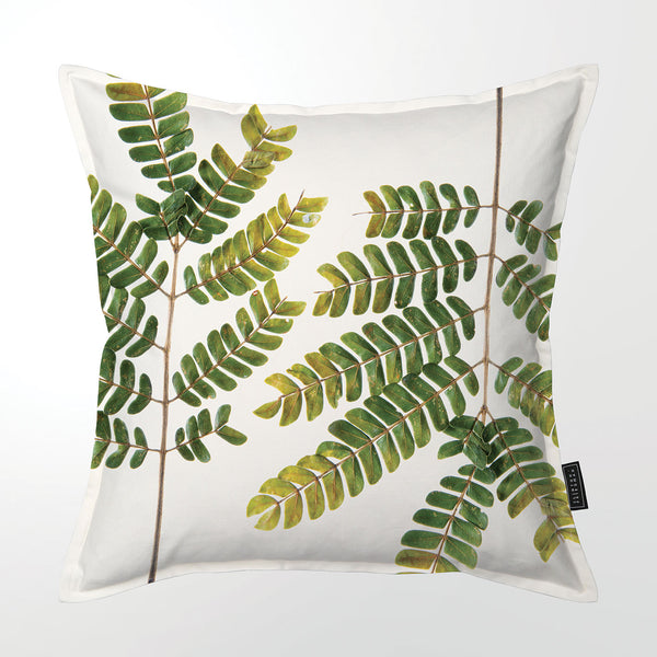 Scatter Cushion (Single sided print) - Albizia Branch