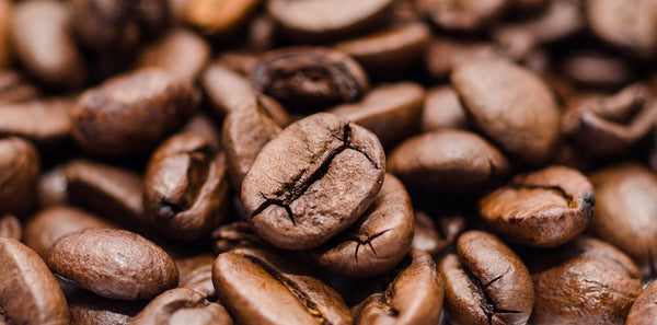 close up of a group of whole roasted coffee beans