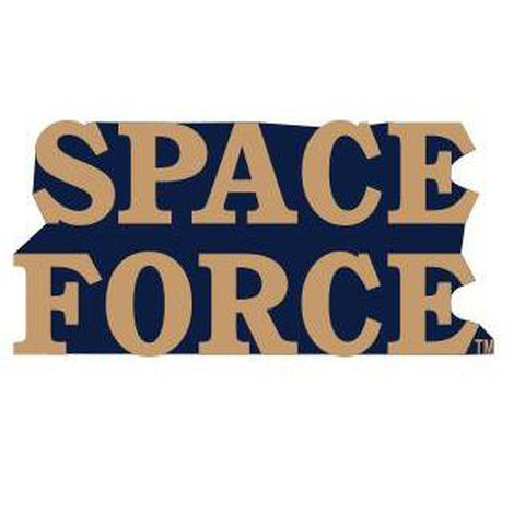 "U.S. Space Force 1"" Lapel Pin"