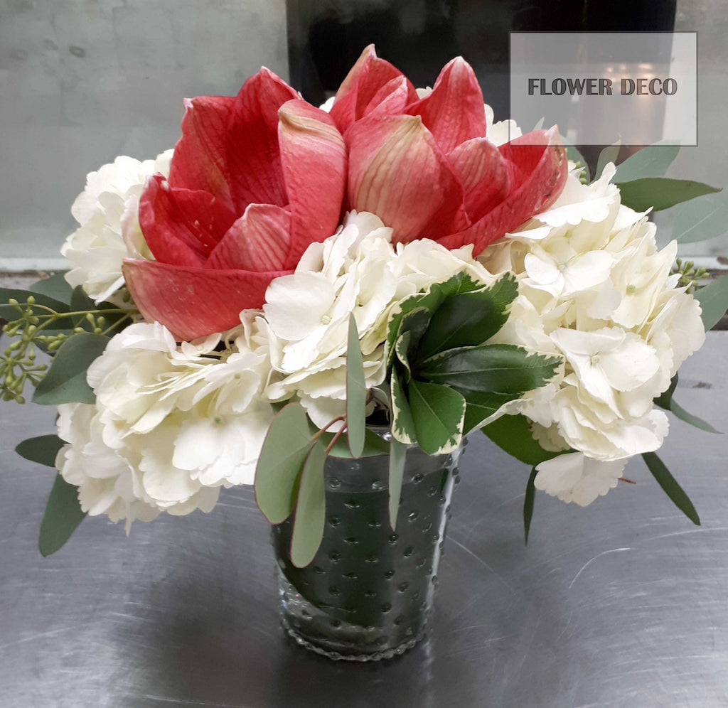 Amaryllis Table Arrangement (Set of 2)