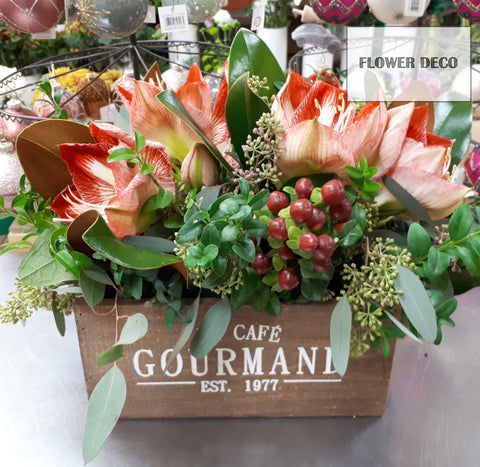 Amaryllis Box Arrangement