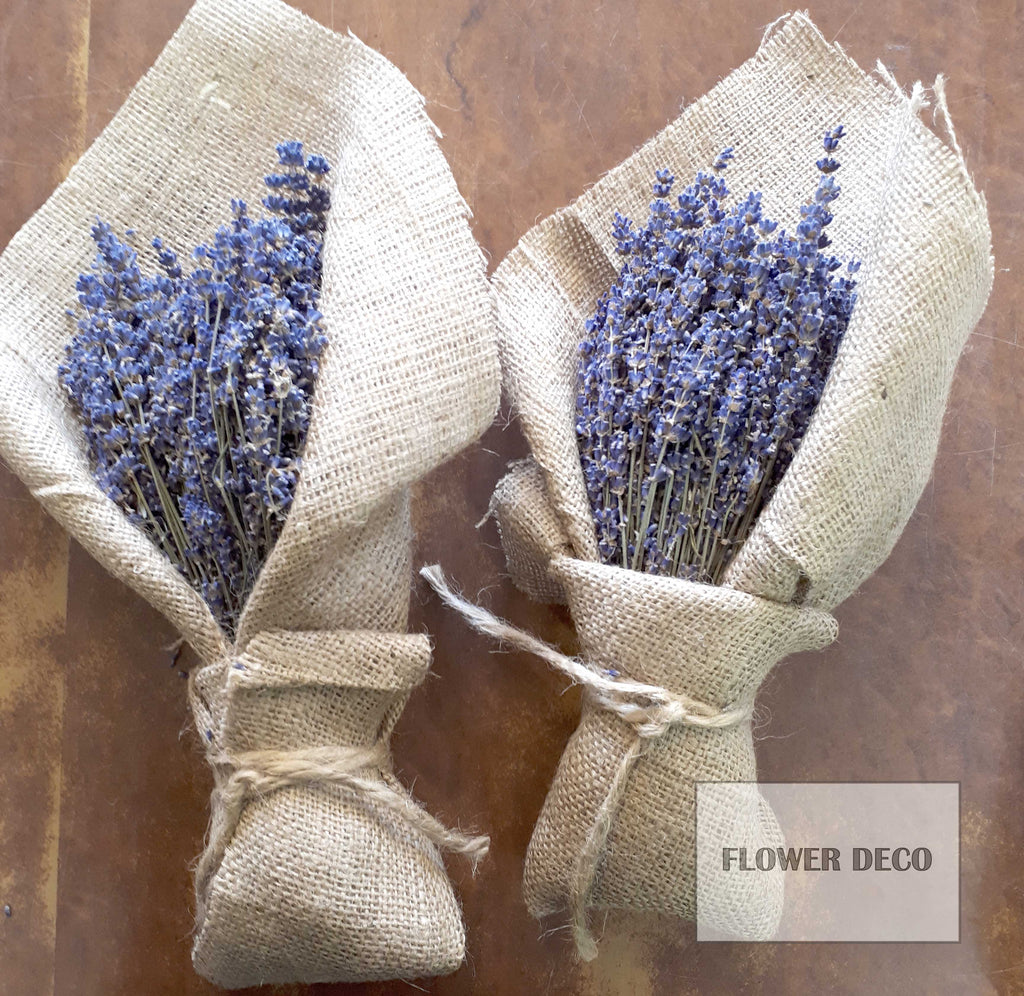 Dried Lavender set of 2