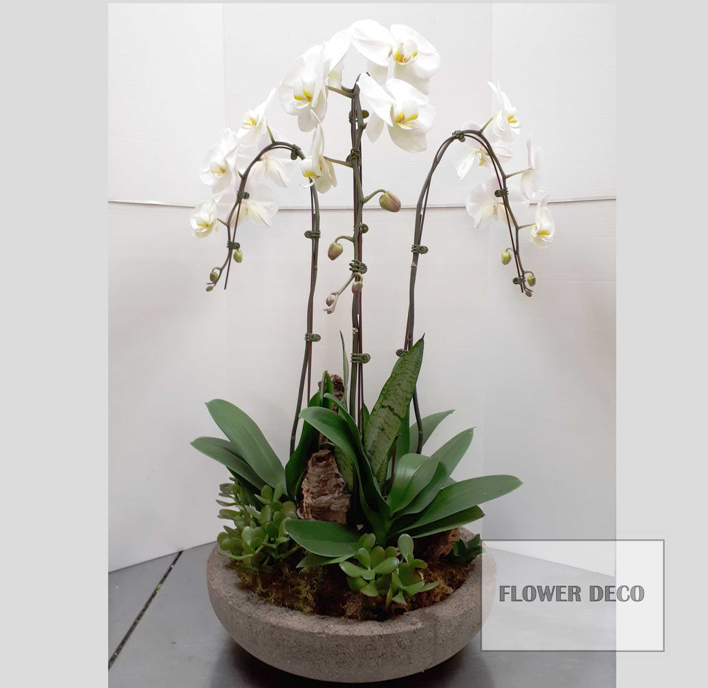Tall Orchid Stone Planter