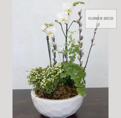 Mini White Orchid Pot