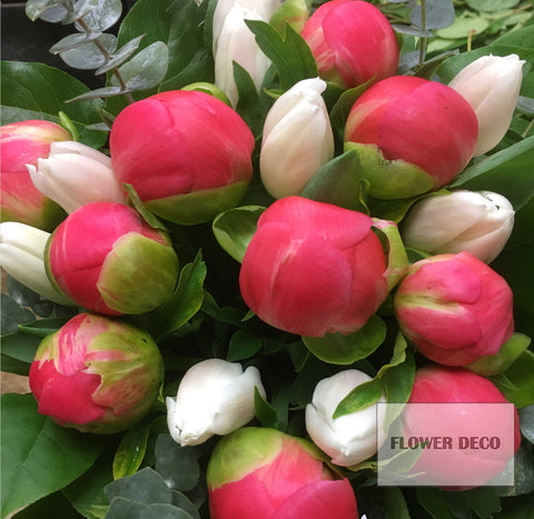 Peonies and Tulips Bouquet
