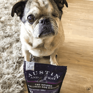 articles/testimonials-bentley-cbd-for-dogs-cats-austin-and-kat.png