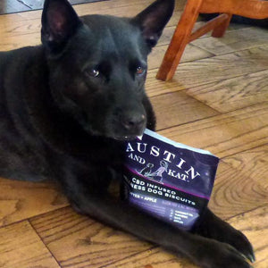 articles/testimonials-laika-cbd-for-dogs-cats-austin-and-kat.jpg