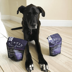 articles/testimonials-makai-cbd-for-dogs-cats-austin-and-kat.png