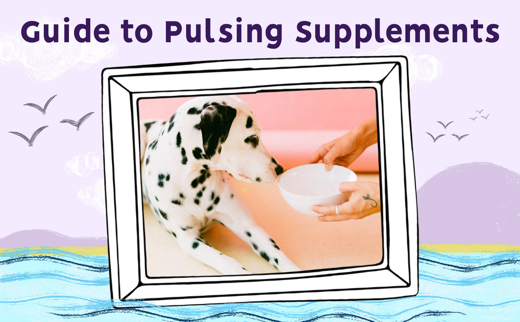 Austin and Kat's Guide to Pulsing Supplements