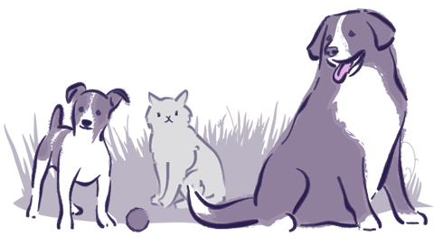drawing of a small dog, cat, and big dog playing