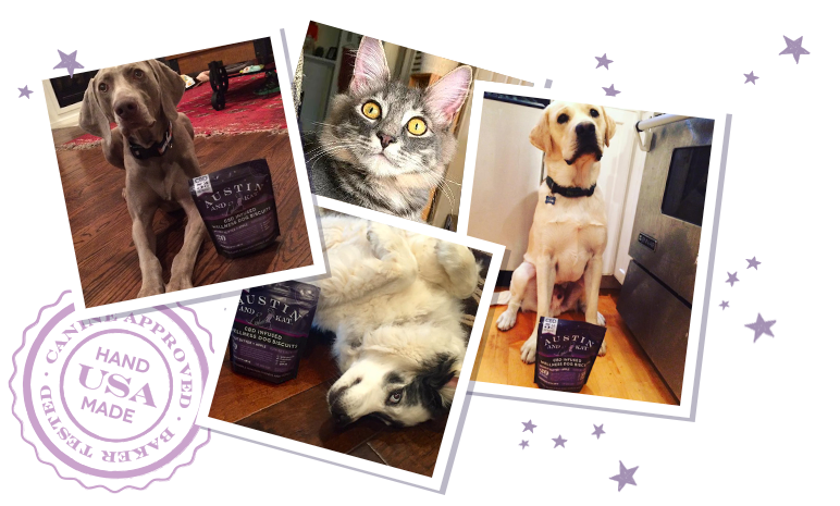 collage of various dogs and cats with a bag of Austin and Kat CBD biscuits