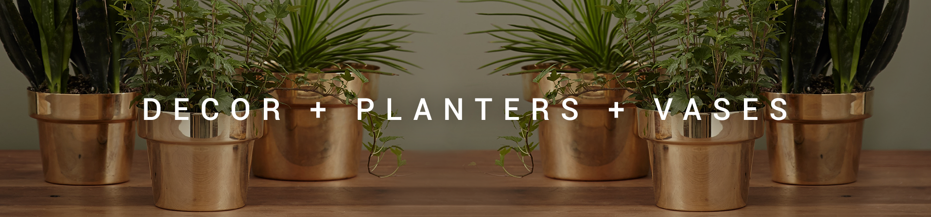 - Decor + Planters + Vases -