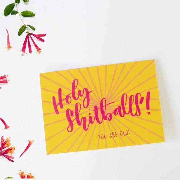 Greeting Card - Holy Shitballs! You Are Old!-Stationery-PropShop24.com