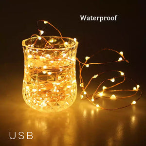 Sliver String Fairy Light - Battery - Warm White-HOME ACCESSORIES-PropShop24.com