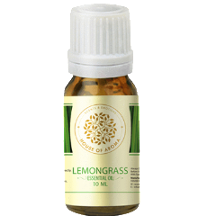 Lemongrass Essential Oil 10 ML-PERSONAL-PropShop24.com