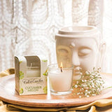 Cucumber Melon Scented Glass Candle-HOME-PropShop24.com
