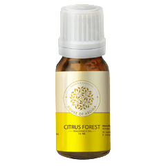 Citrus Forest Fragrance Oil 10 ML-PERSONAL-PropShop24.com