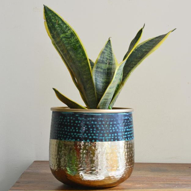 Textured Gold Planter-HOME ACCESSORIES-PropShop24.com