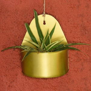 Curved Mounted Wall Planter - Gold Finish-HOME ACCESSORIES-PropShop24.com