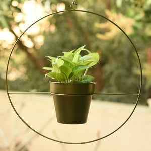 Round Metal Planter - Gold-HOME ACCESSORIES-PropShop24.com