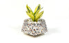 Planter - Concrete Terrazzo - Floater-HOME ACCESSORIES-PropShop24.com